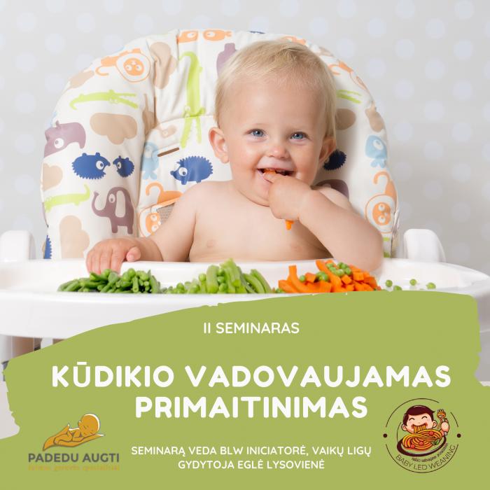 """II seminaras ,,Kūdikio vadovaujamas primaitinimas"""""""